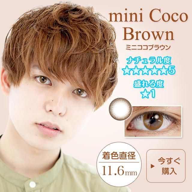 ミニココブラウン11.6mm