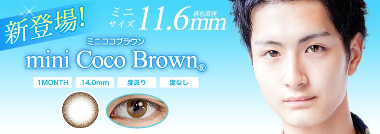 ミニココブラウン(11.6mm)新発売!